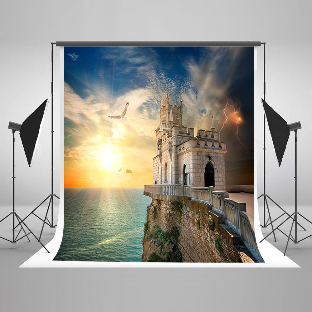 Valentine's Day Photography Backdrops Blue Sky Sea Gulls Party Photo Backdrops Sunshine Castle Backgrounds for Photography 600cm 300cm backgrounds painting flowers blooming beauty mother s day photography backdrops photo lk 1428
