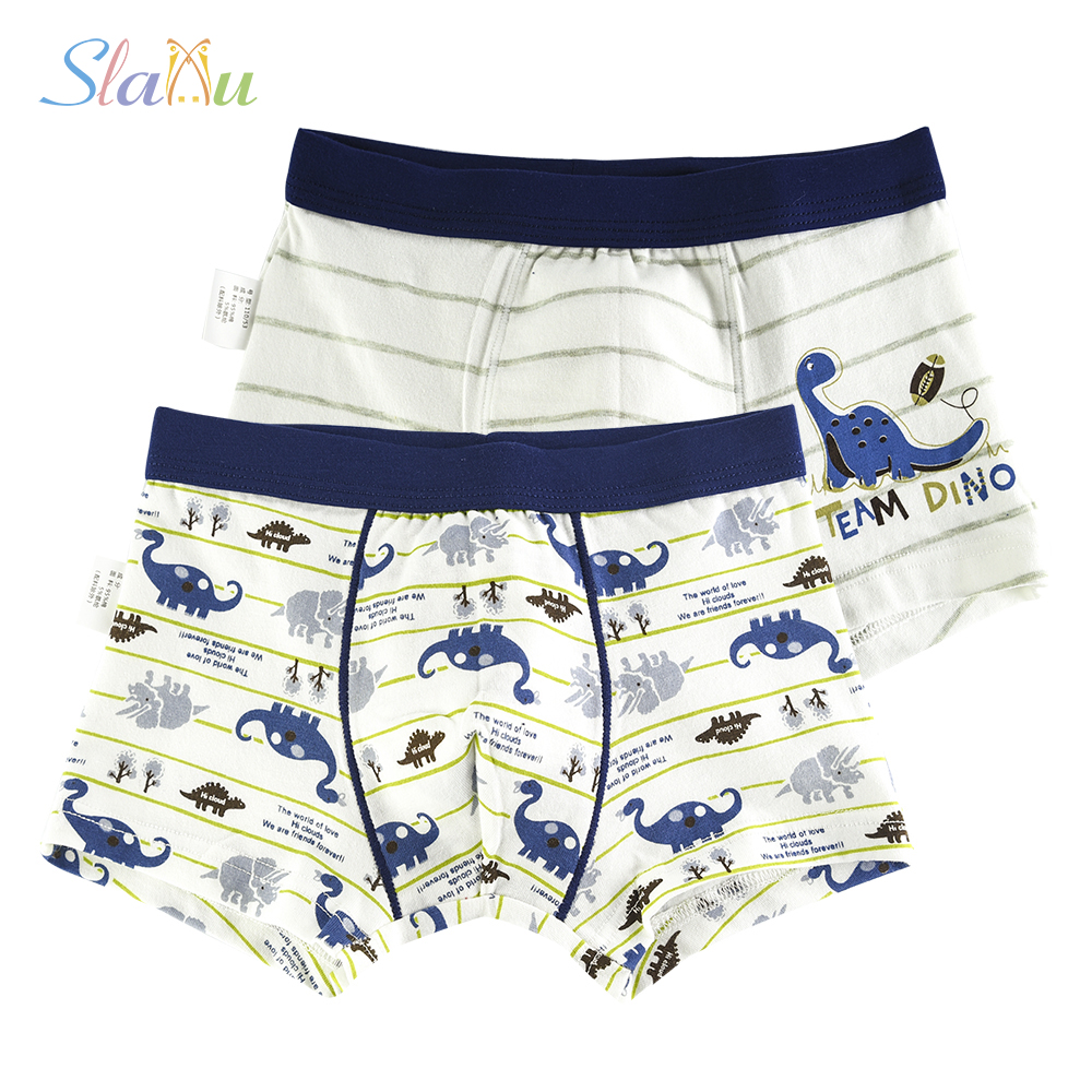 2 Pcs/lot Animal Pattern Kids Underwear Soft Organic Cotton Teenager Underpants Childrens Boys Shorts Baby Panties 2-16y