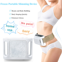 Home Use Fat Freezing Machine Fat Freeze Body Slimming Weight Loss Dissolve Fat Cold Therapy Anti Cellulite Massager