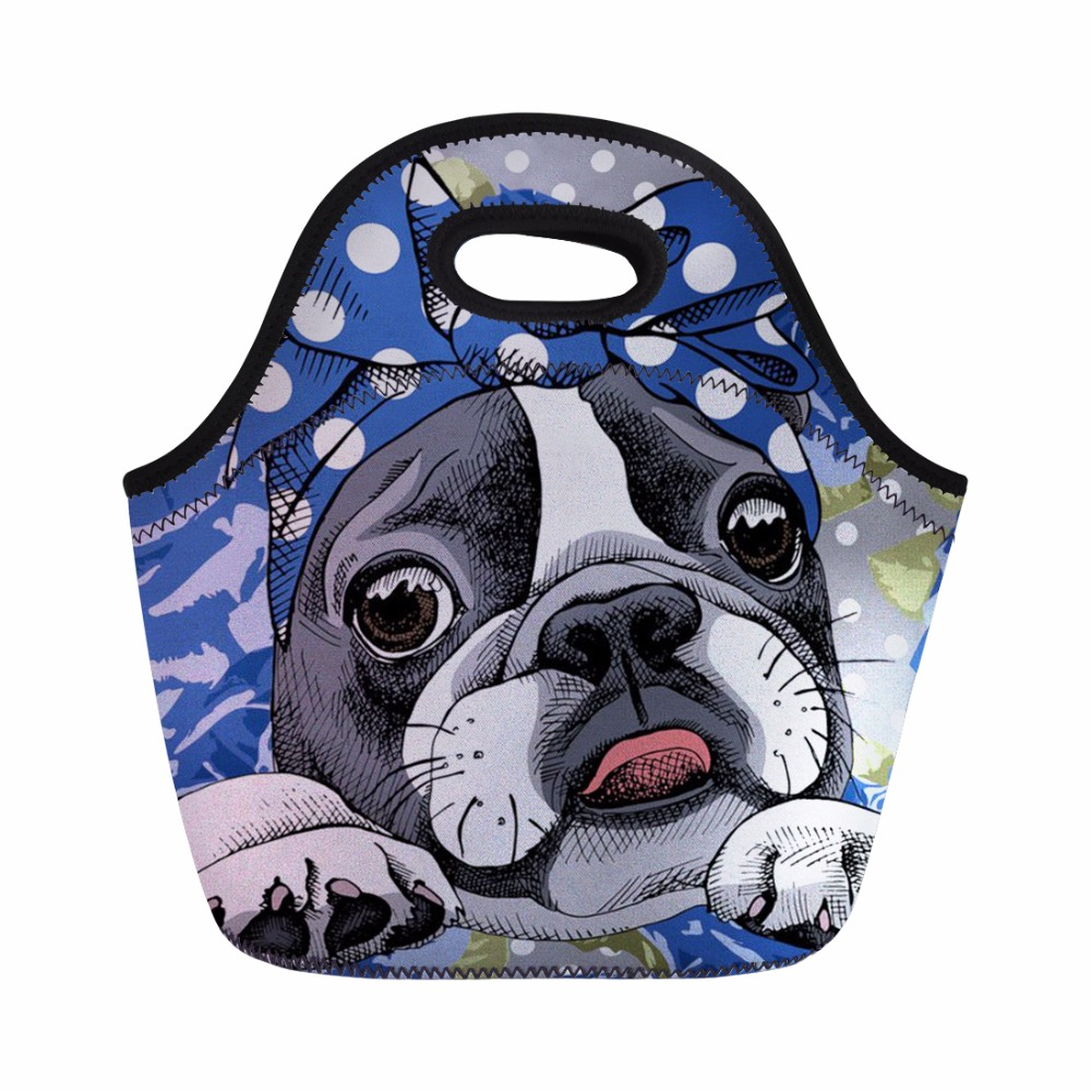FORUDESIGNS School Bags 3pcs/set Boston Terrier Print Satchel School Orthopedic Backpacks for Children Teenager Girls Schoolbag