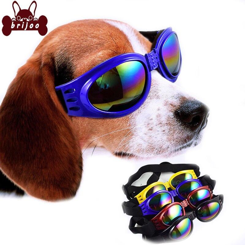 Brijoo perro gafas de sol de moda para mascotas plegable grandes ...