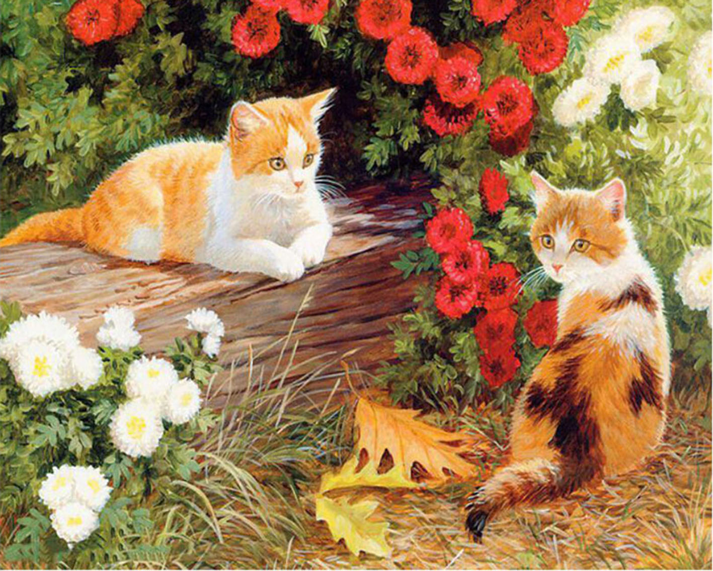 Frameless Picture Two cats Painting By Numbers Modern Wall Art Handpainted Oil On Canvas For Home Decoration