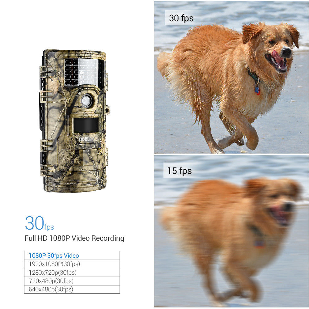 CT006 Hunting Video Camera 20MP 1080p 30fps Trail Cameras Farm Security 0.4s Trigger Time Night Vision Wildlife Photo Trap