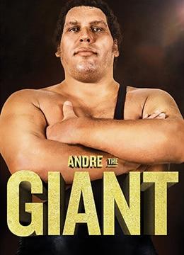 巨人安德雷