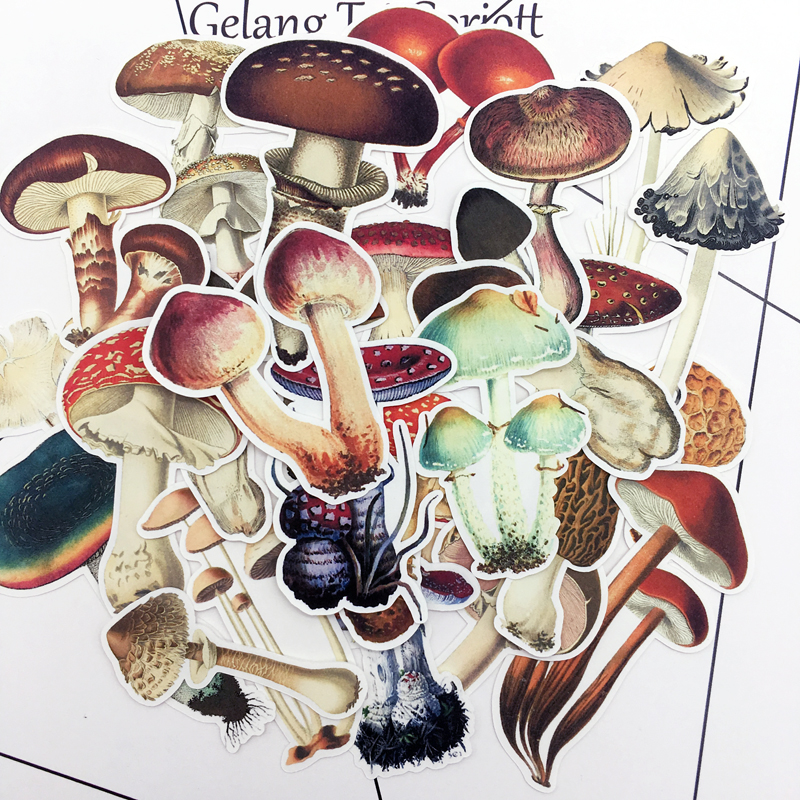 25pcs Hand Drawing Colorful Mushroom Sticker Dry Glue Notebook Planner Scrapbooking, DIY Paper Sticker