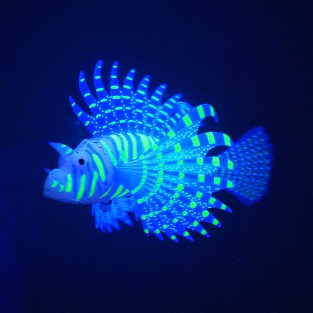 Fluoreszierende Fische