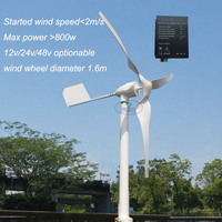 Hot 600w MAX POWER 800W Horizontal Wind Turbine Generator 12v 24v AC With Wind Charge Controller