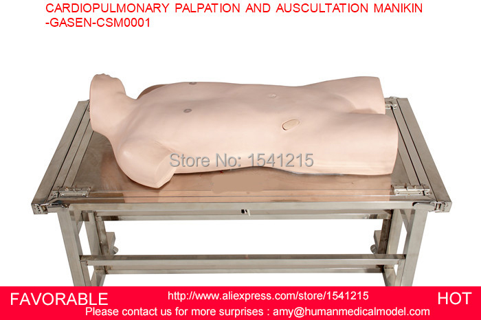 MEDICAL SIMULATOR MEDICAL TRAINING MANIKINS MEDICAL TRAINING CARDIOPULMONARY PALPATION AND AUSCULTATION MANIKIN-GASEN-CSM0001 cpr training manikin simulator medical training manikins medical training manikins central venous injection model gasen csm0002