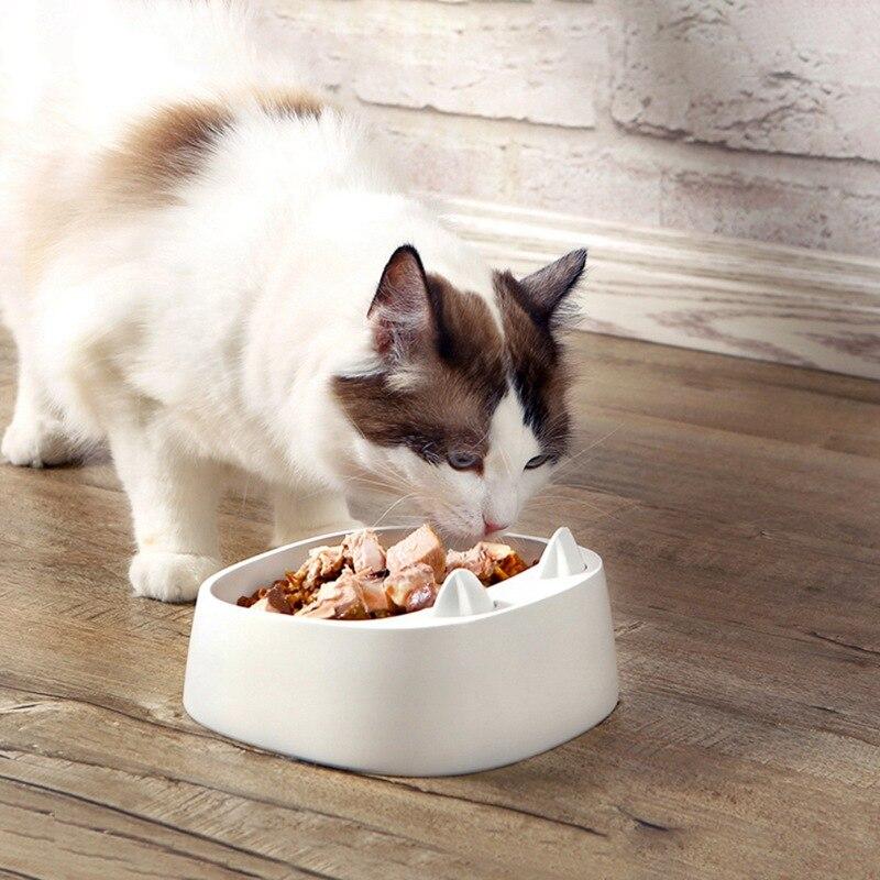 один картинки с едой для кошек улыбка твоя