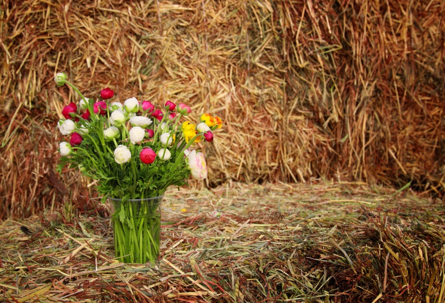 Laeacco Hay Bale Flower Portrait Scenic Baby Photography Backgrounds Customized Photographic Backdrops For Photo Studio
