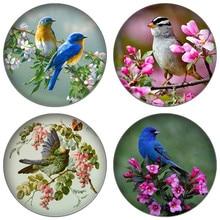 ZDYING винтажные бабочки птицы и цветы 12 мм/16 мм/18 мм/20 мм/25 мм круглые фото стекло кабошон демонстрационная с плоской задней частью
