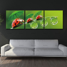 Canvas Wall Art Printed 3 Pieces Pictures Lady Bugs