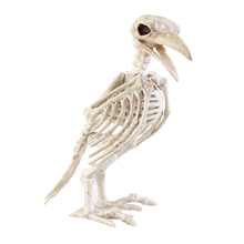 Halloween Crazy Bone Skeleton Raven 100% Plastic Animal Skeleton Bones Horror Halloween Prop Bird Crow Skeleton Decoration(China)