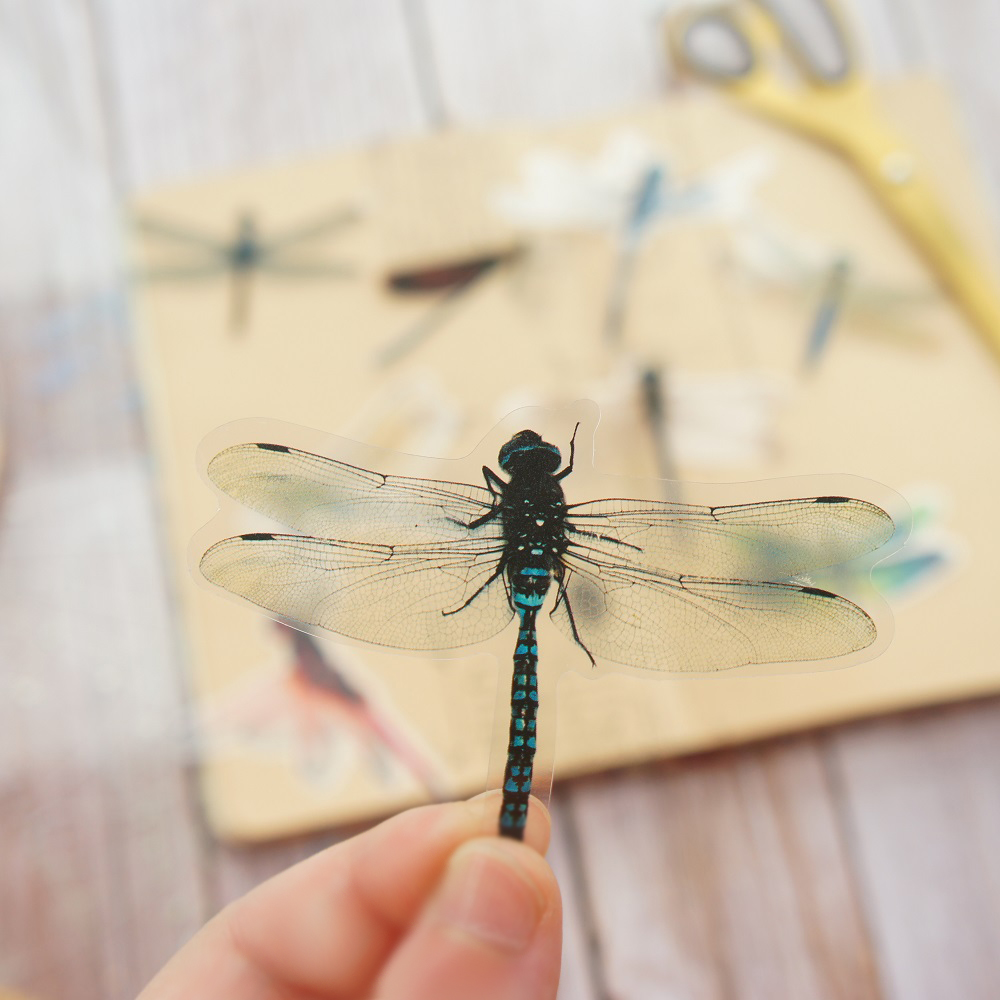 28pcs Insect Theme Dragonflies In Summer Style PVC Sticker Scrapbooking DIY Gift Packing Label Decoration Tag