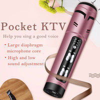 Metal mini professional wired karaoke microphone support voice changer elegant sound quality for phone singing studio microphone