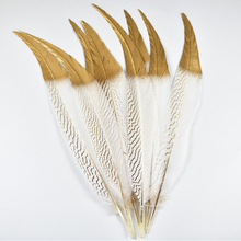 100Pcs/Lot Dipped Gold Head Silver Pheasant Tail Feathers Lady Amherst for Crafts Wedding Decoration