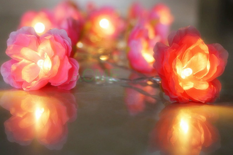 Silk Flower lights 10