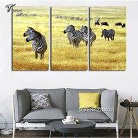 Zebra Wall Painting Canvas Print Set Art Ideas For Home Living Office Decoration Autumn Africa Grass