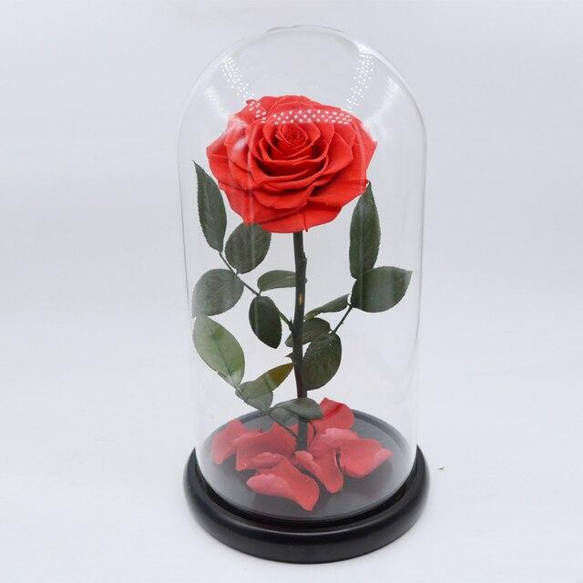 วันแม่ของขวัญ DIY น้อย Prince ฝาครอบกระจกแช่แข็งสดรักษาเป็นอมตะดอกไม้ดอกกุหลาบนิรันดร์ DIY