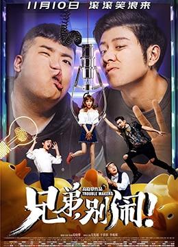 《兄弟,别闹!》2017年中国大陆喜剧电影在线观看