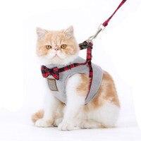 Зоотоваров веревки воротники кошка цепи нагрудный ремень комплект кошка-ошейники жилет британский стиль мода атмосфера бабочки