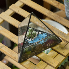 Modern Micro Landscape Pyramid Glass Geometric Terrarium DIY Tabletop Succulent Plant Terrarium Box Decorative Flower Pot Bonsai