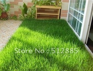 Original package about 300 pieces Bluegrass seeds Free Shipping, Grass Seeds DIY Countyard