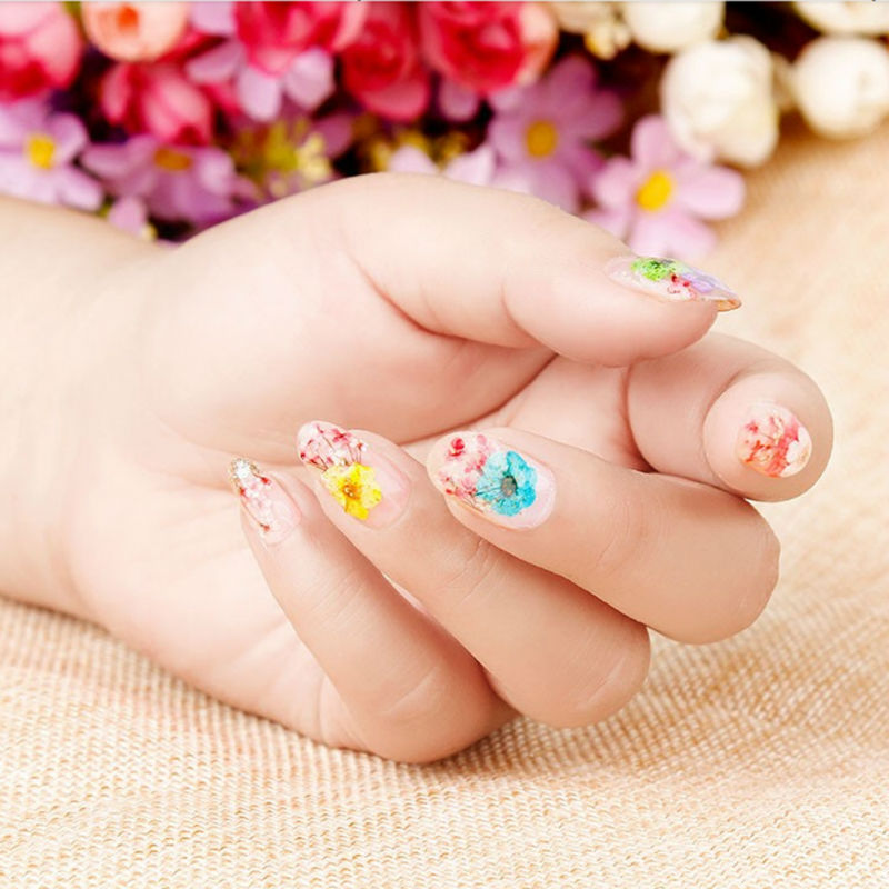 BlinkinGel New Nail Art Products of 30pcs Dry Flower for Nails Art ...