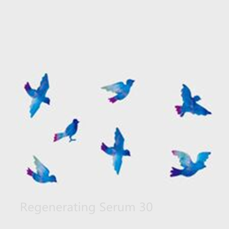 Watercolor birds The sky is blue hand painted The original contracted waterproof tattoo paste small pure