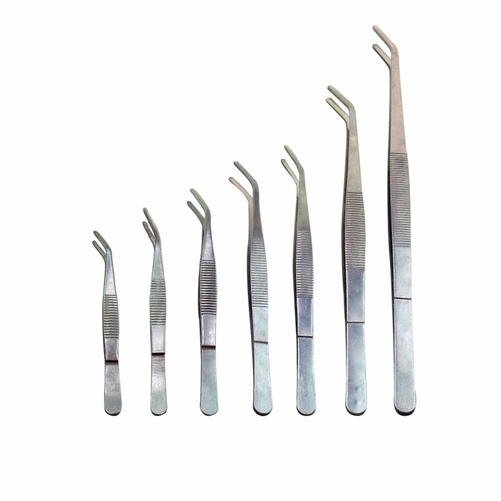 5Pcs/Set Medical Surgical Tweezers Stainless Steel Dental Precision Bent Forceps Heat Re ...