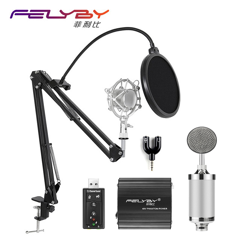 все цены на FELYBY professional NP800 condenser microphone for computer audio karaoke mikrofon studio recording 3.5mm microphones sets