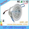 20 pcs 12 W Led Downlights Pode Ser Escurecido Lâmpadas led 85-265 V CONDUZIU a iluminação Embutida led spot light com motorista levou 3 anos de garantia