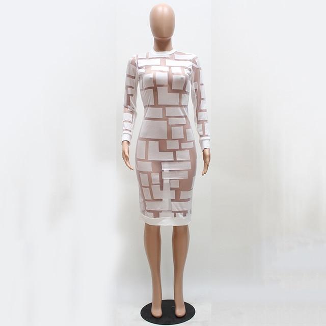 Long Sleeve Bodycon See Through Dress