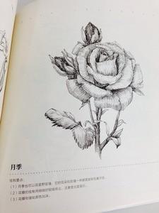 Image 4 - Libro de pintura de dibujo de línea china: Technigues de dibujo para 87 flores famosas lápiz blanco negro boceto libro de dibujo