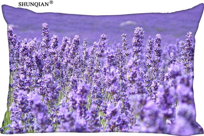lavender background wallpaper - HD1920×1280