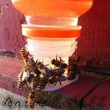30 Pcs Beekeeping Tools Drinking Fountain Bee Queen Bee Drinking Water Equipment Bee Tools