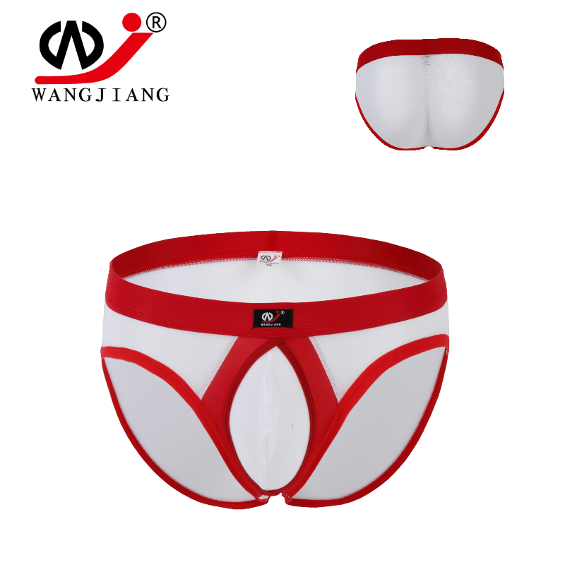 Men's Underwear Elastic Nylon Mesh Transparent Briefs Convex Ring U Outsourcing WJ DAN1003SJA