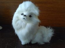 Compare Prices on White Toy Poodle- Online Shopping/Buy Low