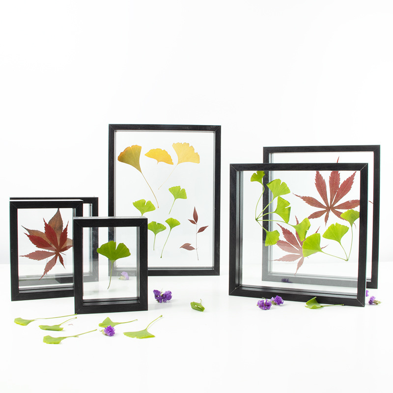 European Style Plant Dried Flower Leaves Specimen Box Square A4 Paper-Cut DIY Frame Double-Sided Glass Frame Desktop Ornaments