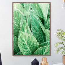 Pink Fresh Plant Canna Leaves Wall Art Canvas Painting Nordic Posters And Prints Watercolor Pictures For Living Room Decor