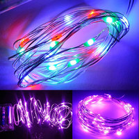 3.0M 30LED Copper Wire String Strip Fairy Light Holiday Christmas W/Battery Case