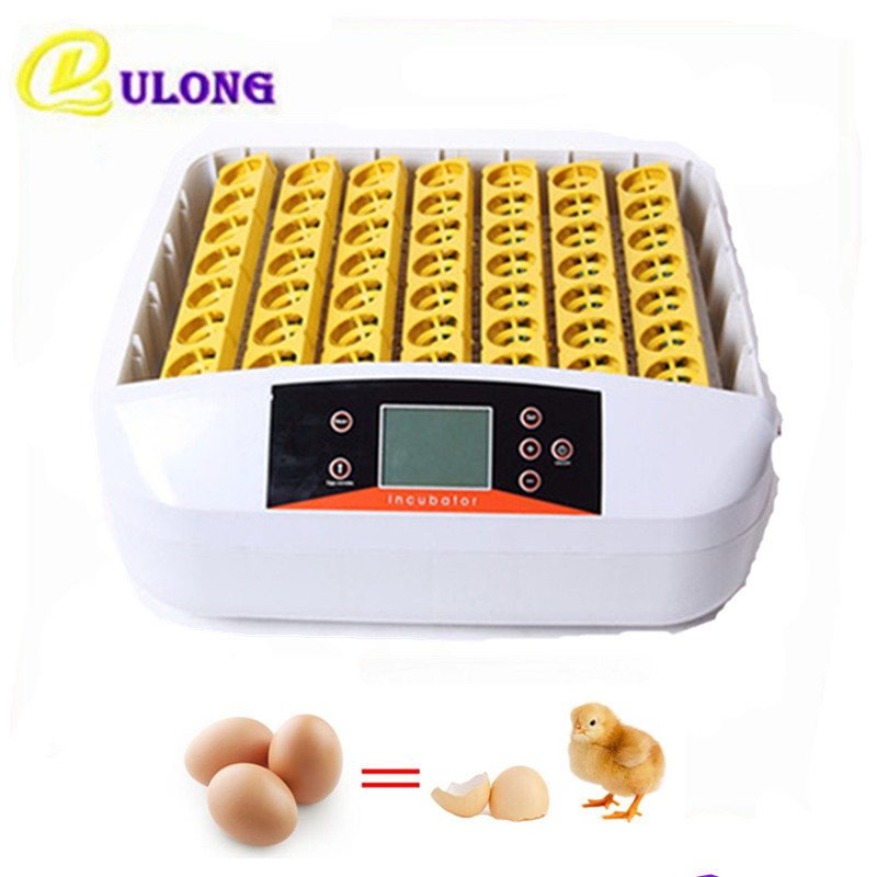 56 Eggs mini household commercial industrial incubator equipment  suit for chicken duck pigeon brooder hot sale 6 4 4m bounce house combo pool and slide used commercial bounce houses for sale