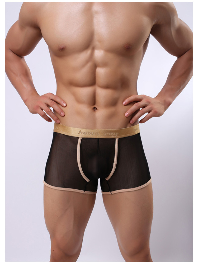Hot selling 1pcs brand howe ray Transparent gauze sexy ultra thin men phnom penh pant men