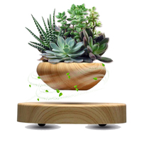 NEW Japan Magnetic Levitation Air Floating Bonsai Plant Pot Mini Plastic Flower Sky Plant Pot Succulent