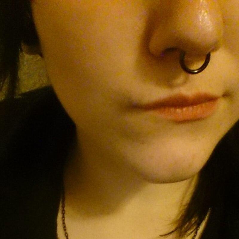 G23 Titanium Hinged Segment Ring 16g 14g Nose Lip Nipple Septum ...