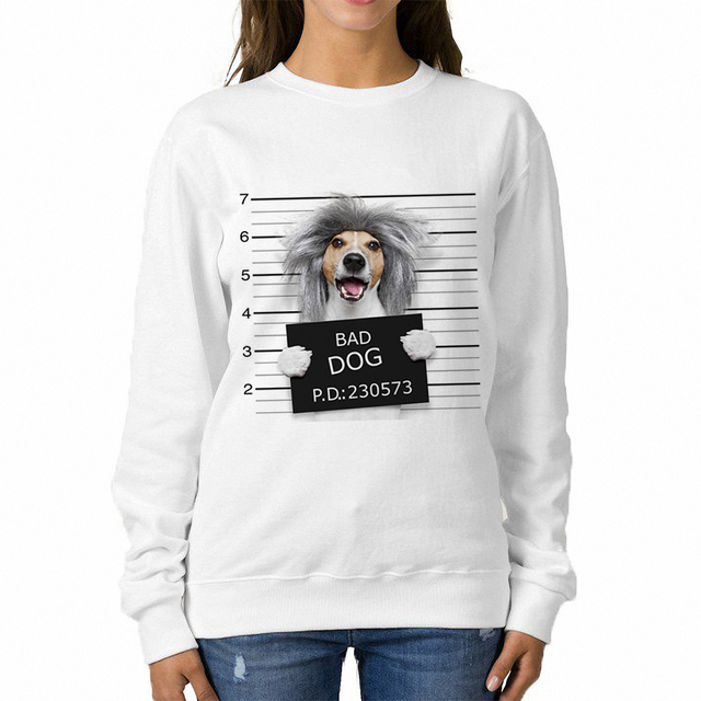 193687558c9e Babaseal Nerd Silly Dog Mugshot Harajuku Autumn Sweatshirt Japan Fashion  Designer Hoodies Cool Crewnecks Love Pink