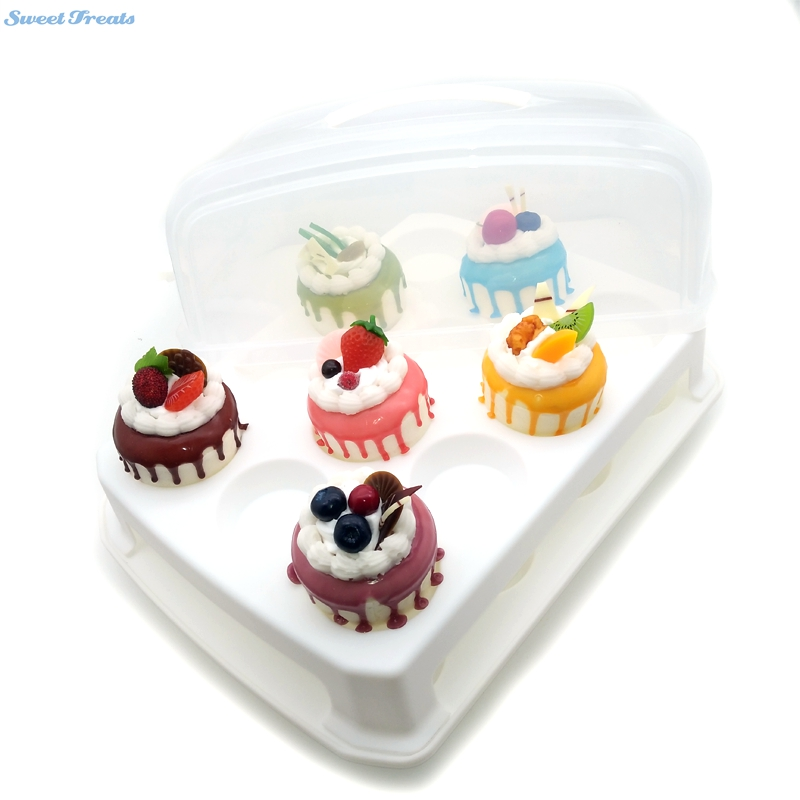 Cake And Cupcake Carrier