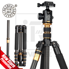 Tripé de fibra de carbono qzsd q666c, tripé monopé para câmeras dslr, suporte luminoso e compacto, profissional