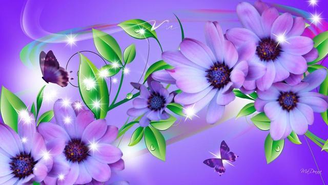 Persona Estrellas Hojas Lavanda Arco Iris Flores Mariposas Purpuras