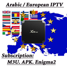 X96 Mini Android TV Box 4K Europe IPTV Support 2000+ Live TV Arabic French Spain Italy Indian IPTV Box Quad Core Set Top Box